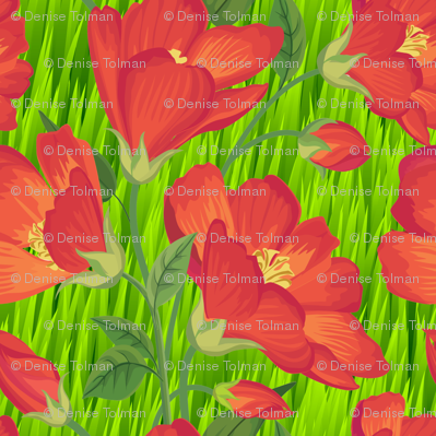 Orange Flowers on Green Grass Large Scale
