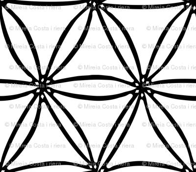 geometric Diatomees