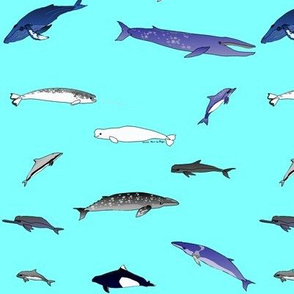 All Whales Scattered on baby blue