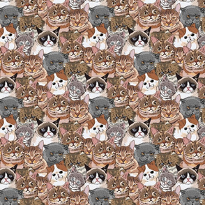 Social Cats