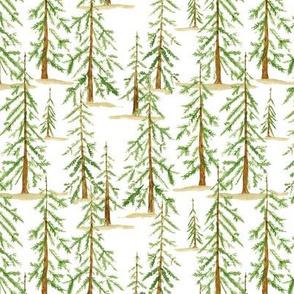 Christmas Tree Farm - medium