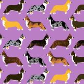corgi fabric // corgi dog fabric, corgi coat colors fabric, cardigan corgi fabric, cute dog fabric, dogs fabric, pet corgis fabric, brindle corgi fabric, tricolored corgi