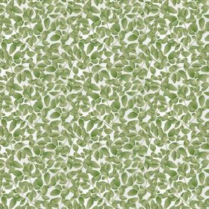 Green and leaf
