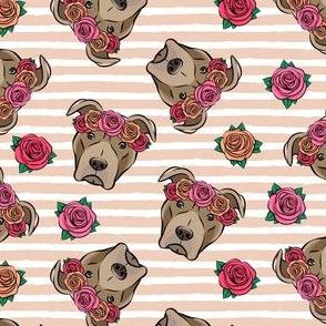 pit bulls - floral crowns - blush stripes