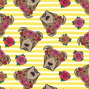 pit bulls - floral crowns - yellow stripes
