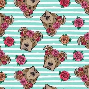 pit bulls - floral crowns - teal stripes