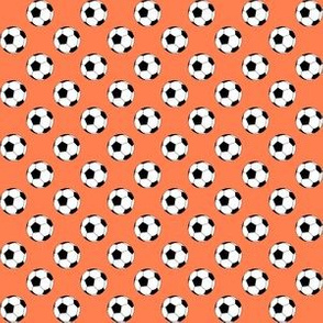 Half Inch Black and White Soccer Balls on Coral