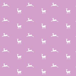Deer 2 - MED58  purple passion white