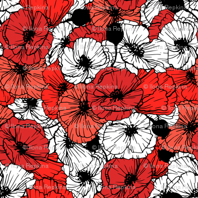 Contrast Poppy Flowers In Red Black And White Colors Giftwrap