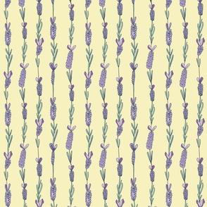 Lavender field sunny yellow