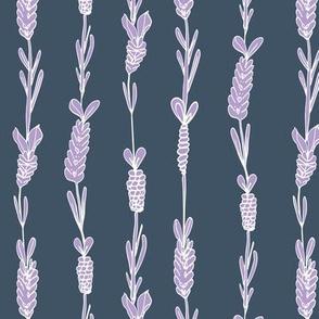 Lavender field navy