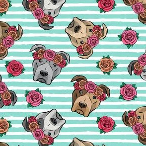 all the pit bulls - floral crowns -  teal stripes