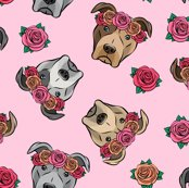 Rfloral-pit-bull-fabric-09_shop_thumb