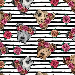 all the pit bulls - floral crowns -  black stripes