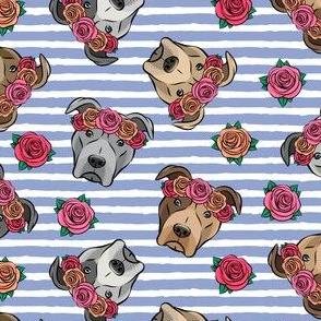 all the pit bulls - floral crowns -  stripes