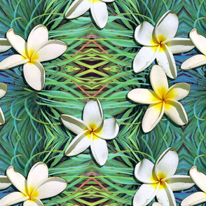 Hawaiian White Plumeria on Tropical Green