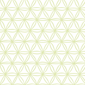 Green Geometric Diatoms