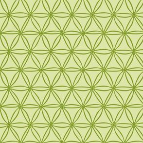 Two greens geometric diatoms