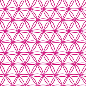 Pink geometric diatoms