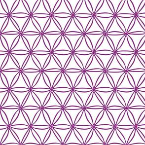 Ultraviolet geometric Diatoms
