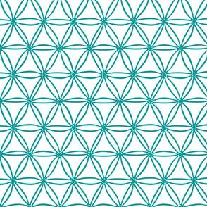 Turquoise geometric Diatoms