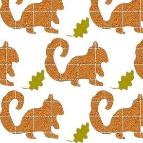 squirrel-ch