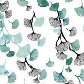 Ginkgo leaves green