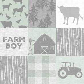 Farm Boy Quilt - pastel green and grey