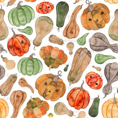 Halloween Pumpkins and Gourds