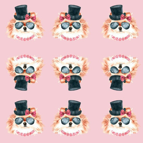 Pretty in Pink Pom in Top hat and glasses