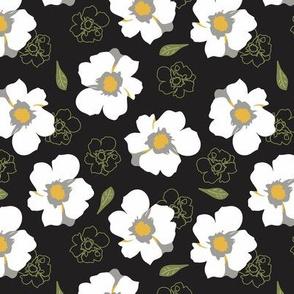 White Dogwood Flowers Black Med