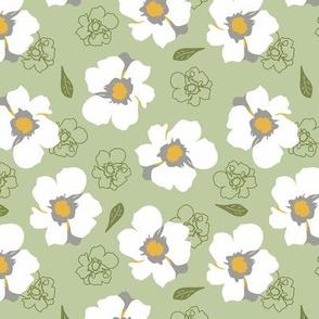 White Dogwood Flowers on Green Medium
