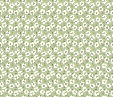 Rwhite-dogwood-flowers-on-green-small_shop_preview