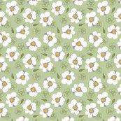 Rwhite-dogwood-flowers-on-green-small_shop_thumb