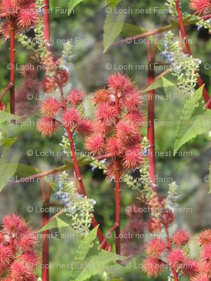 Japanese Garden Floral | Seamless Photo Print