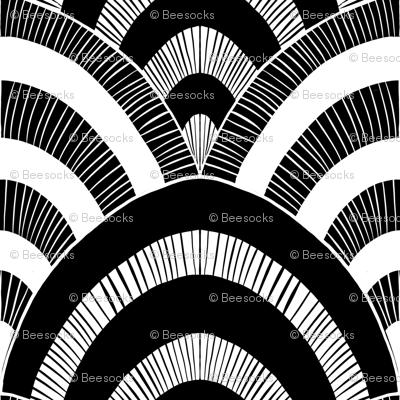 giant black and white scallops