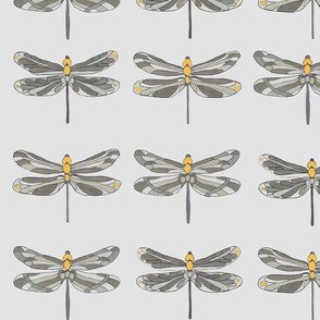Taupe gray and amber dragonflies on gray