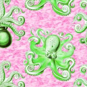 haeckel's octopus  green+pink ink