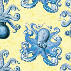 haeckel's octopus  blue+yellow ink