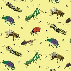 Bug Love Two on Lemon Yellow