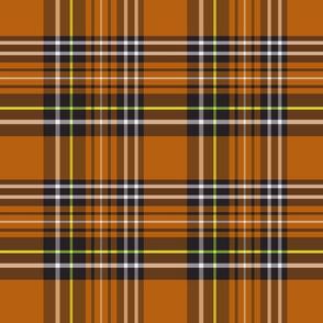 pumpkin tartan plaid 8x8