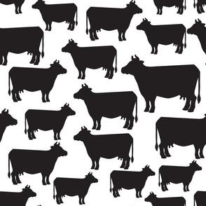 Cows Black on White