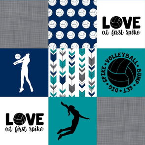 Volleyball//Love at first spike - Wholecloth Cheater Quilt