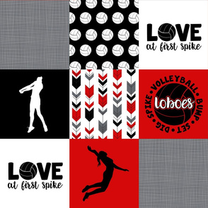 Volleyball//Love at first spike//Loboes - Wholecloth Cheater Quilt