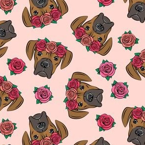 boxer  - floral crowns - fawn on pink