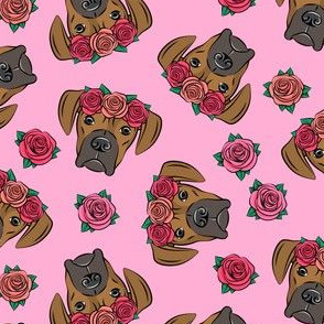 boxer  - floral crowns - fawn on dark pink