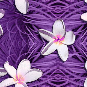 Hawaiian White and Pink Plumeria on Tribal Purple Pattern