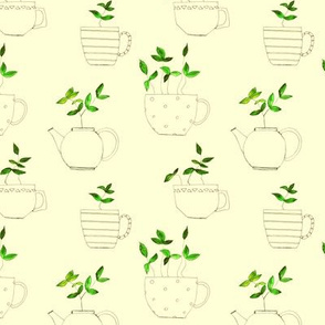 tea plants in tea cups on cream