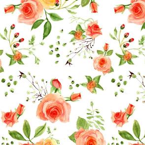 Peach Roses - Watercolor(301)