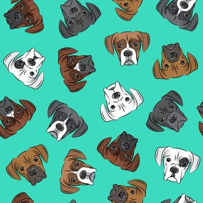 all the boxers - teal